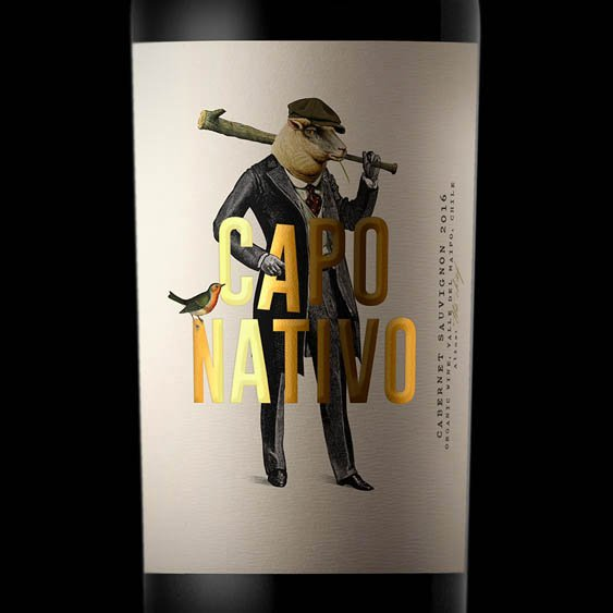 capo nativo wine chile vino oveja remi
