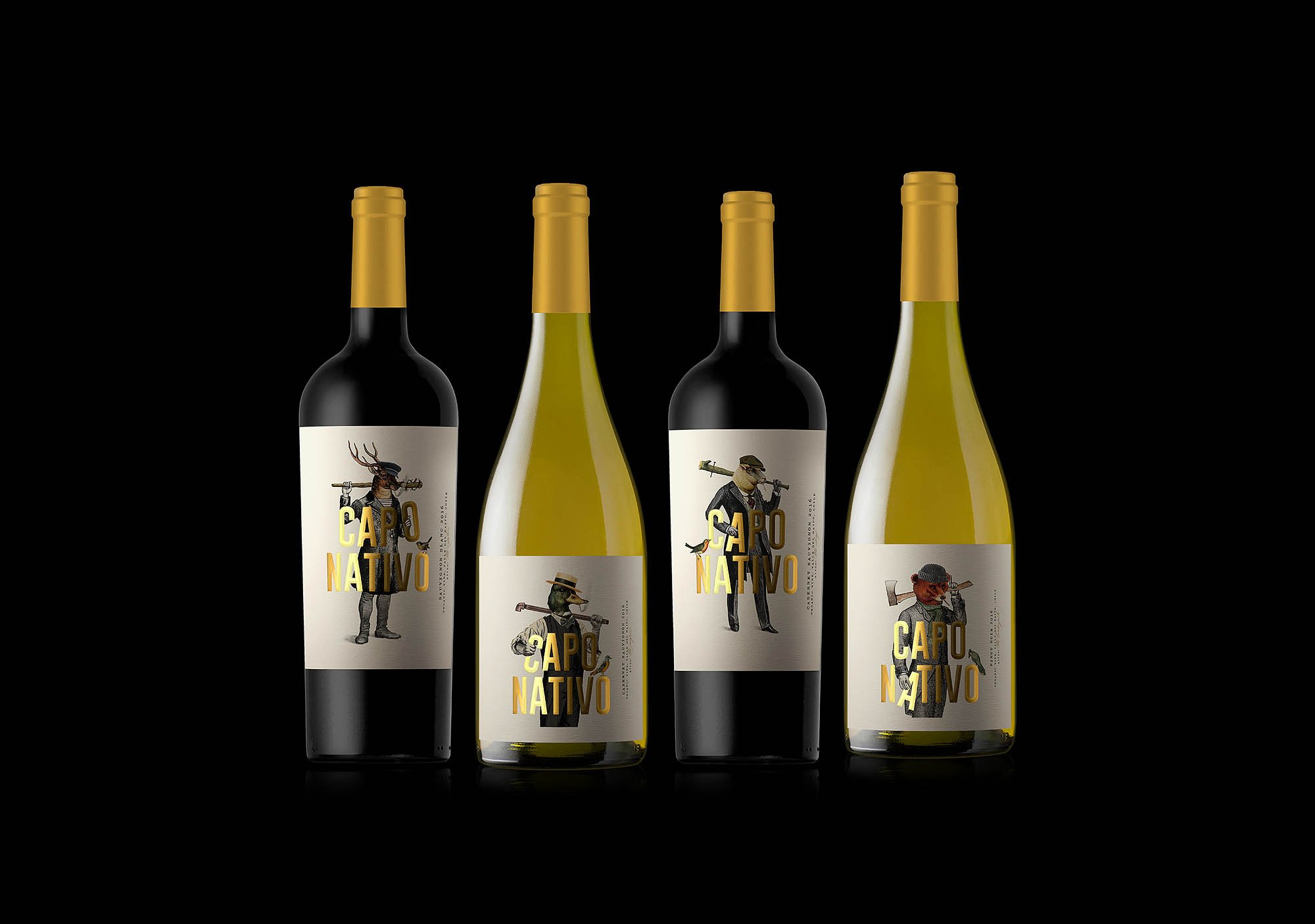 capo nativo wine chile vino oveja remi